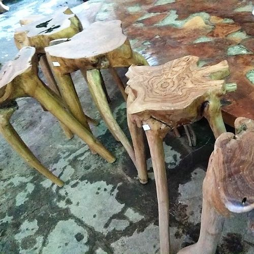 Teak Root Bar Stool