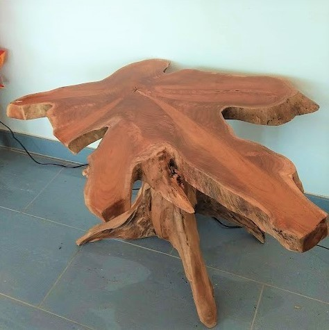 Teak Root Table 1